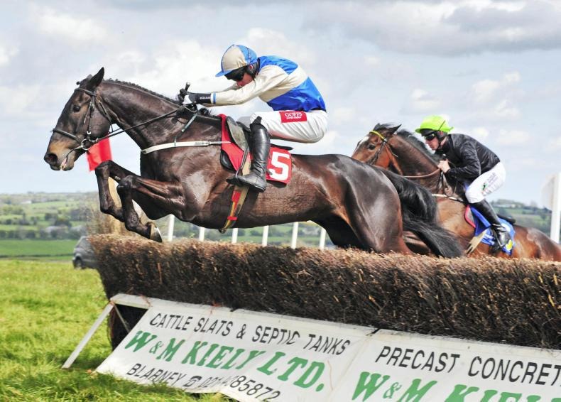 POINT-TO-POINT: DAWSTOWN MONDAY: Mt Leinster Gold gets rave reviews