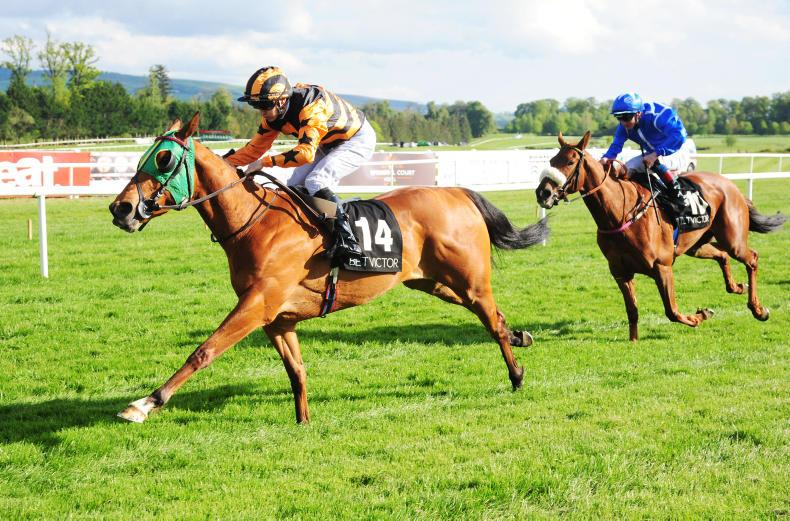 GOWRAN PARK WEDNESDAY: True Self notches her third stakes victory