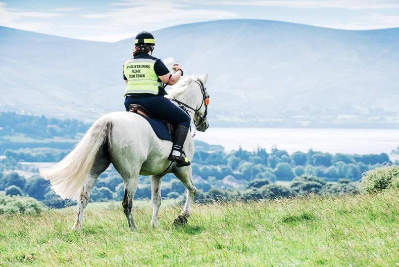 AROUND THE COUNTRY:  Record entry for TREC Championships