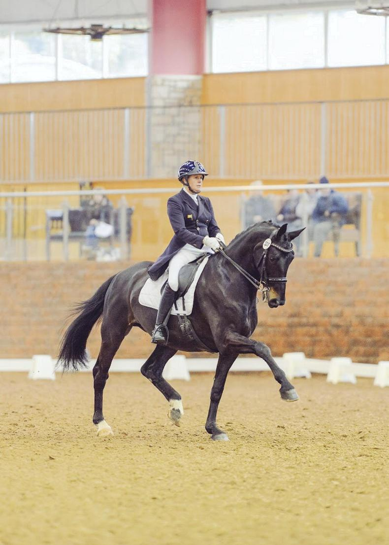 DRESSAGE:  Heike Holstein fifth at Royal Windsor Grand Prix