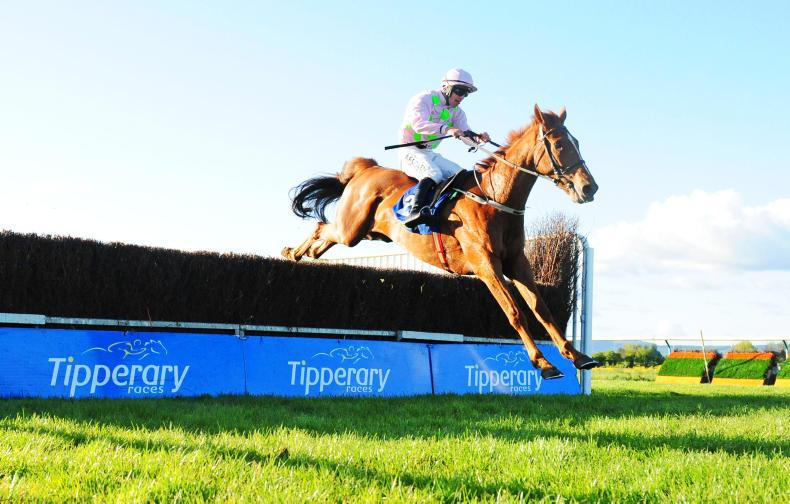 TIPPERARY THURSDAY: Brahma Bull justifies favouritism