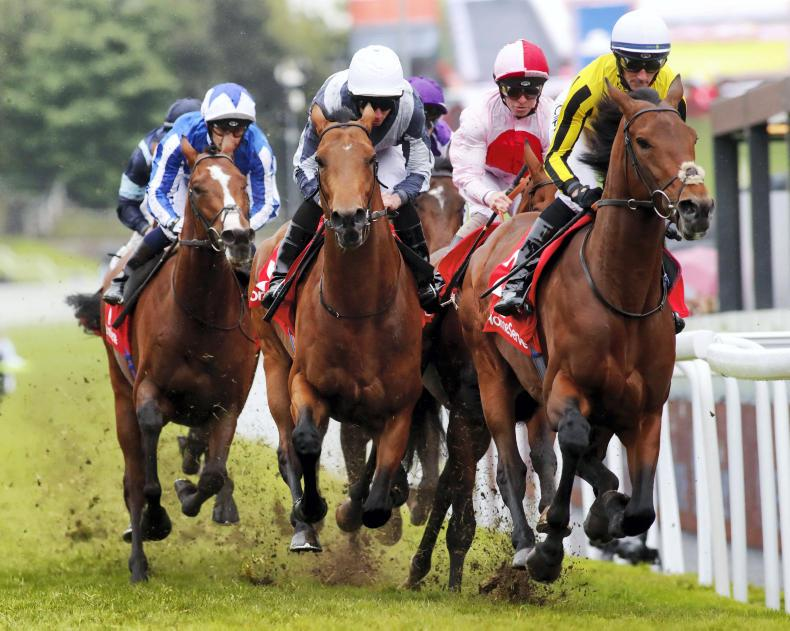 BRITAIN: Maximus leads home another O'Brien one-two