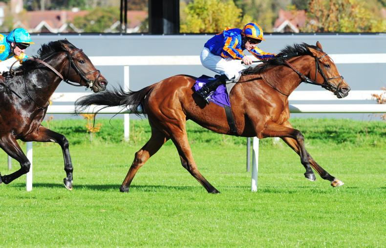FRENCH PREVIEW: Potentially classy Castle can vindicate Pantall