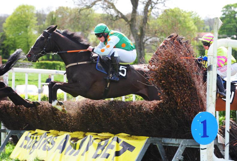 VIEW FROM ABOVE: Debut success for Fakir d'Alene