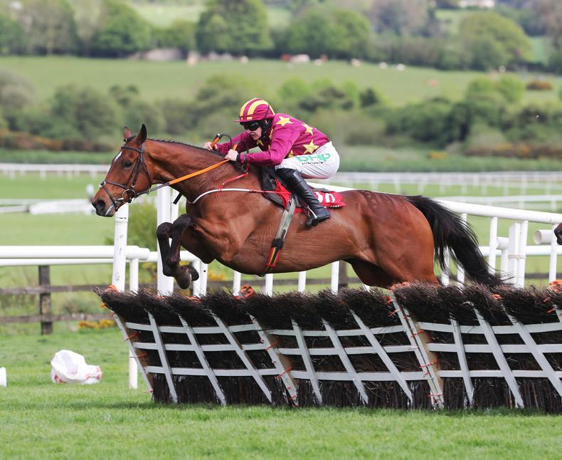 POINT-TO-POINT: Eogháin Ward: Point graduates blossom on the track