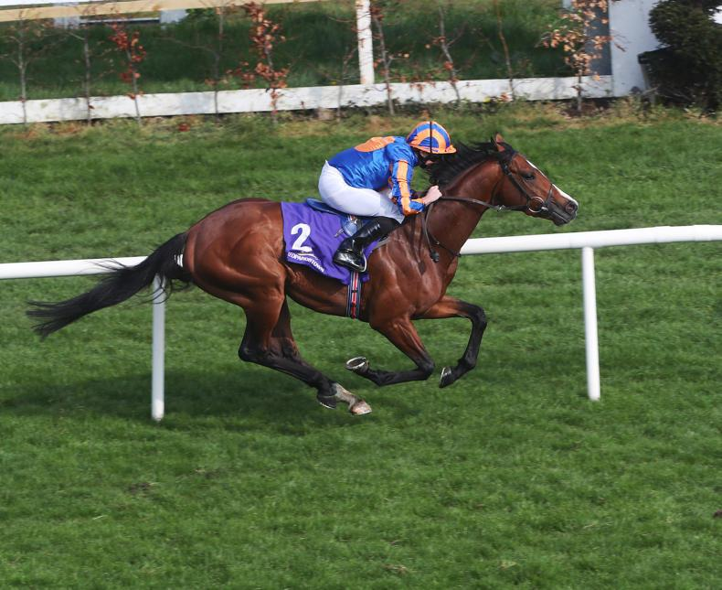 Broome adds further strength to O'Brien's powerful Derby hand