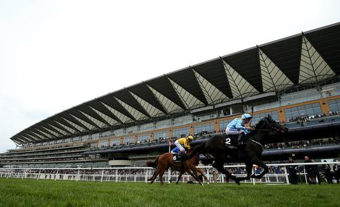 Norfolk Stakes in the mix for Ventura Rebel