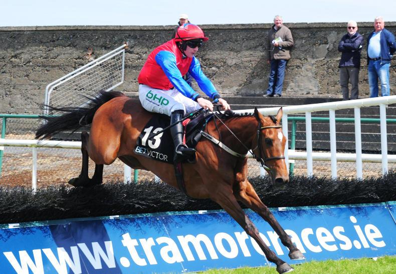 TRAMORE TUESDAY: Princess Vega starts her career off with a win