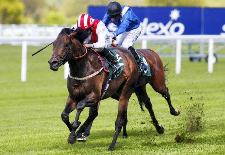 Invincible Army conquers York rivals in style
