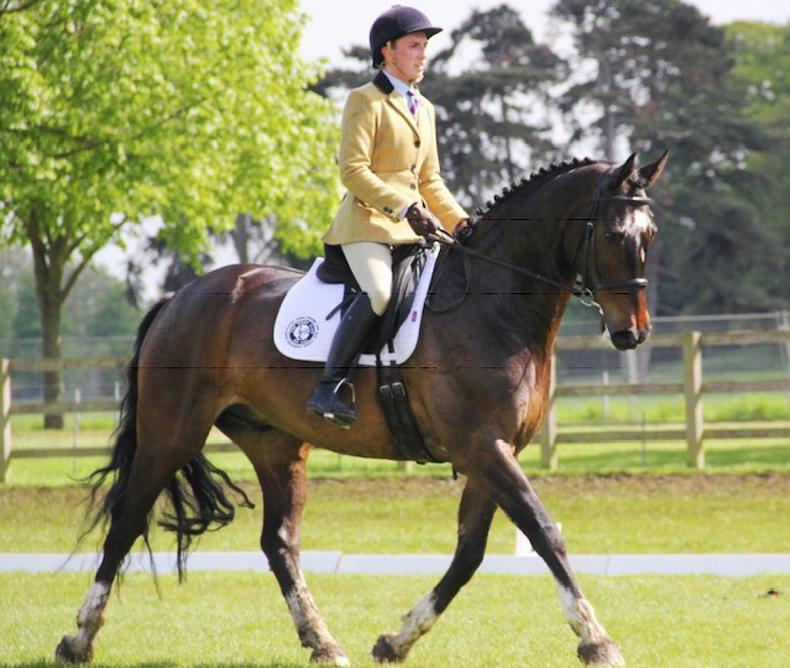 AROUND THE COUNTRY:  Royal Windsor win for Northern Ireland team
