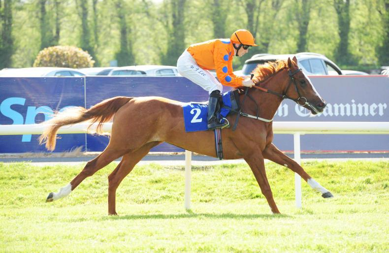 KILLARNEY TUESDAY: Foxtrot Liv outclasses opponents