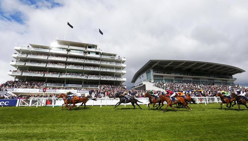 INVESTEC DERBY:  O'Brien could run as many as eight horses in Derby
