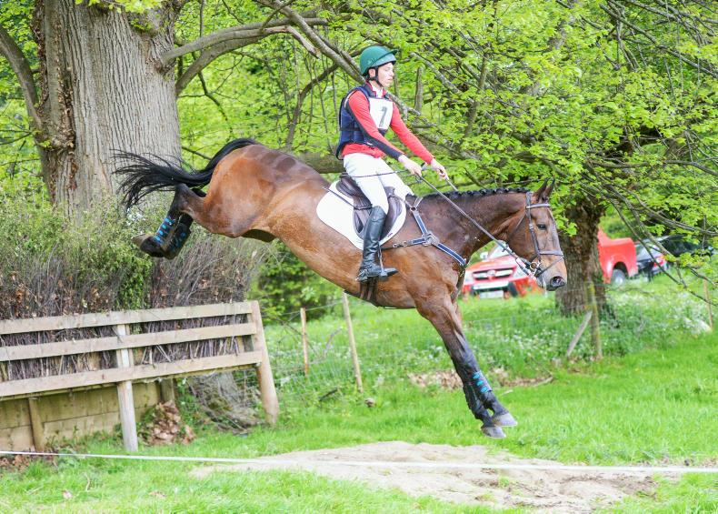 EVENTING:  Comfortable win for Daniels and Eclipto