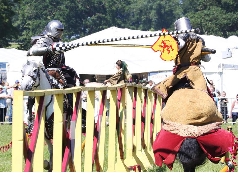 PONY TALES:  Stampede to Shanes Castle for Game Fair!
