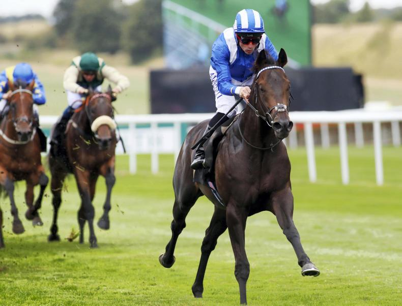 PEDIGREE ANALYSIS: Dark Angel's next big sprinter?