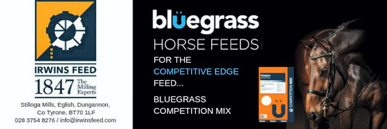 Horse Sense: Bluegrass equine nutrition and health road show