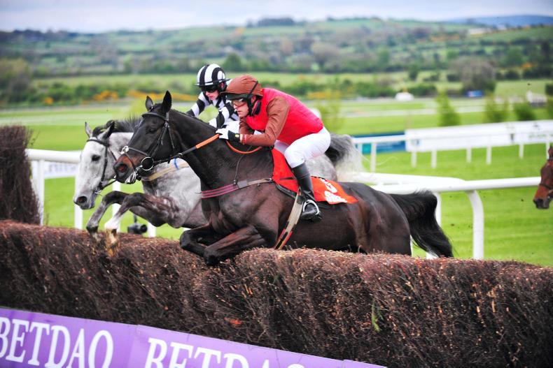 BRITISH POINT-TO-POINT: Busy weeks for Maxwell