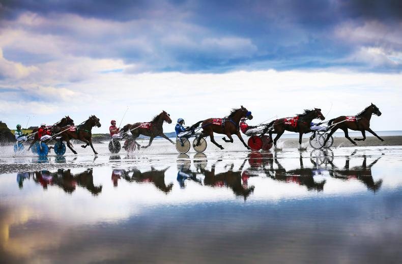 HARNESS RACING: Demon steals the show at Inchydoney