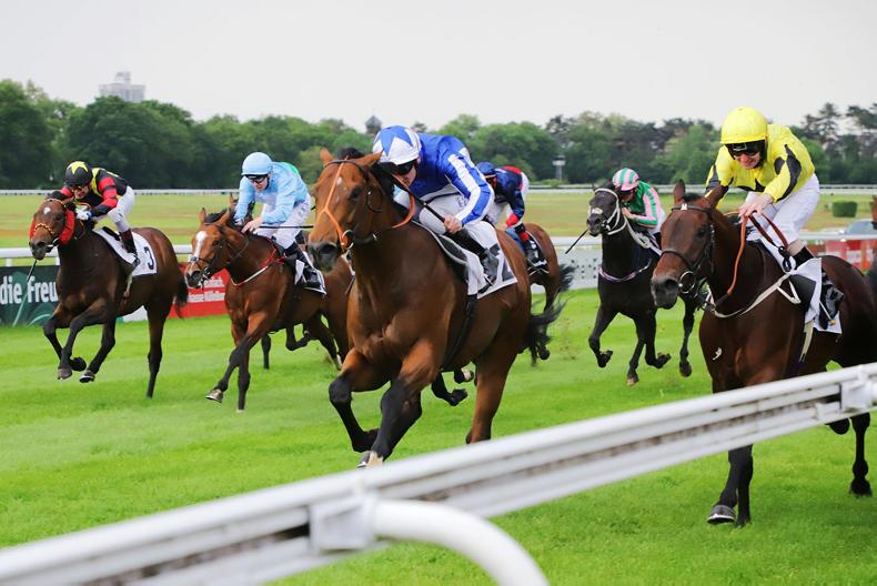GERMANY: Fox the Champion in German Guineas