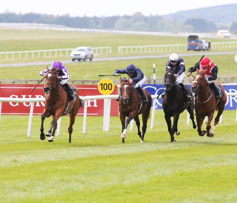 CURRAGH SUNDAY: Magical can land hat-trick in Gold Cup