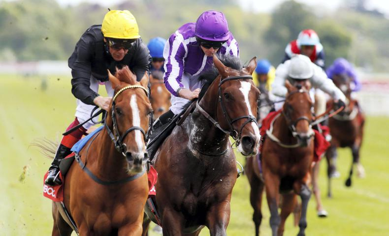 TIME WILL TELL: Stadivarius may face an Ascot fight