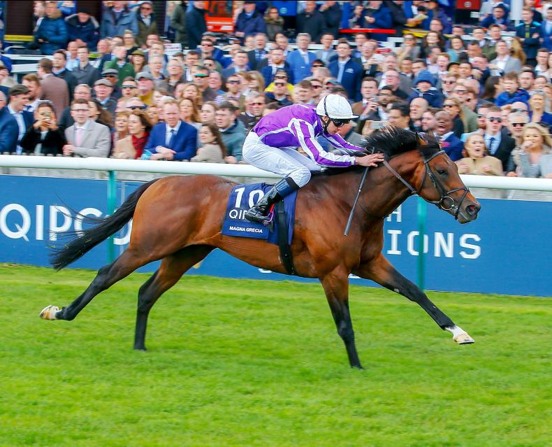 Irish 2000 Guineas preview: Can Too Darn Hot deny Magna Grecia the double?