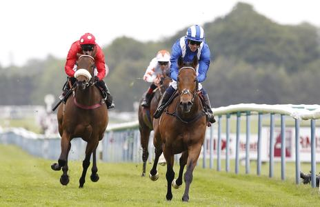 Brilliant Battaash blitzes Temple Stakes field