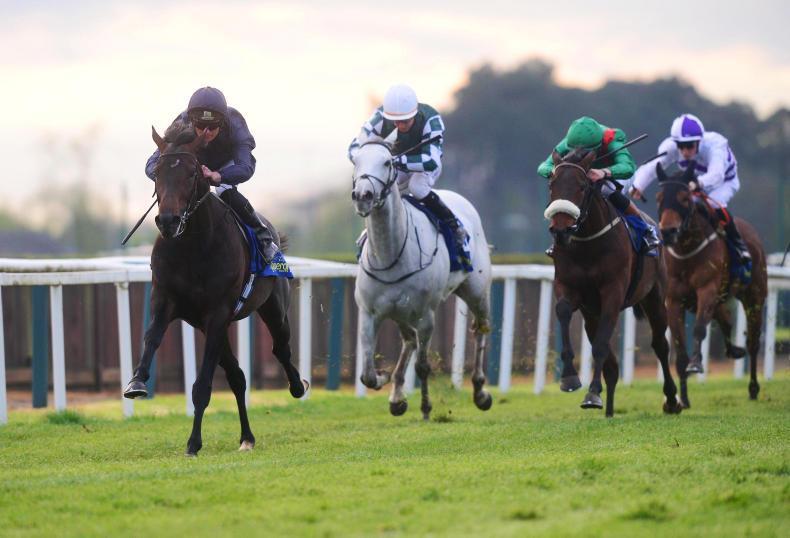 Sir Dragonet leads seven-strong Derby raid for Aidan O'Brien
