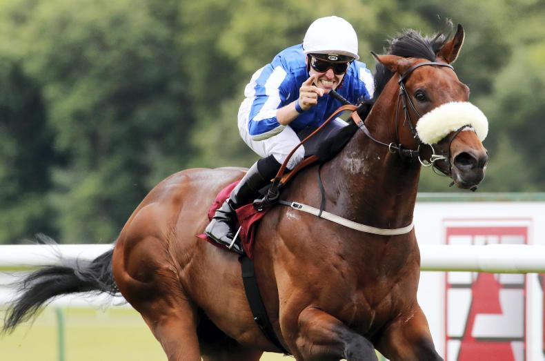 PEDIGREE ANALYSIS: Group 1 potential on show