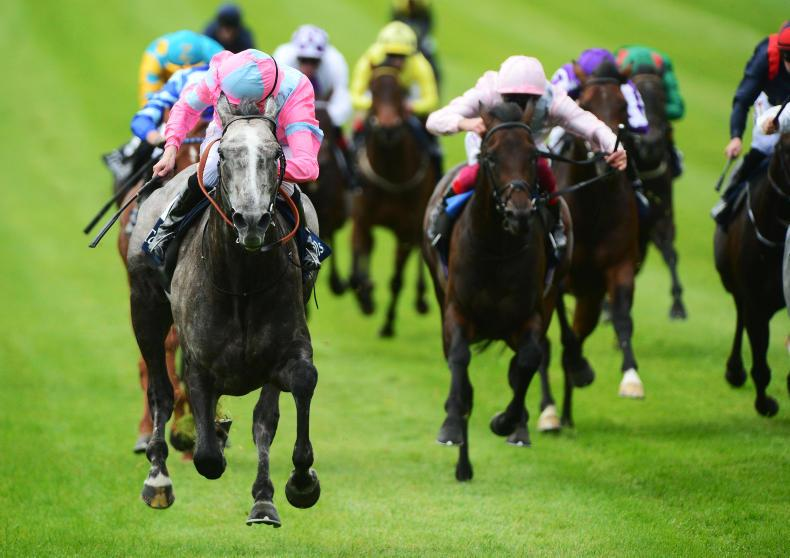 CURRAGH SATURDAY: Phoenix Of Spain rises to Guineas challenge