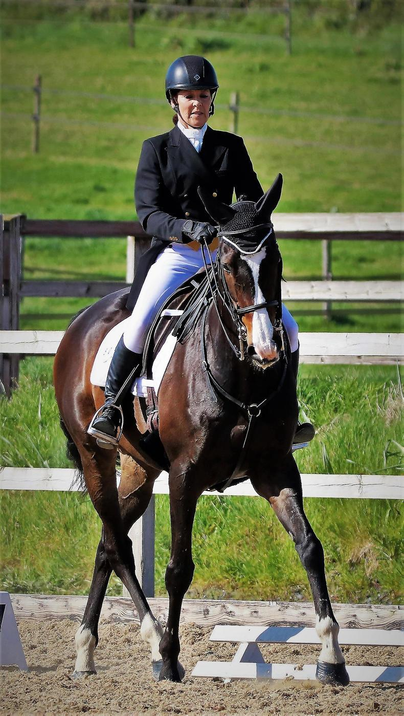 AROUND THE COUNTRY:  No dressage Grief for Wiseman