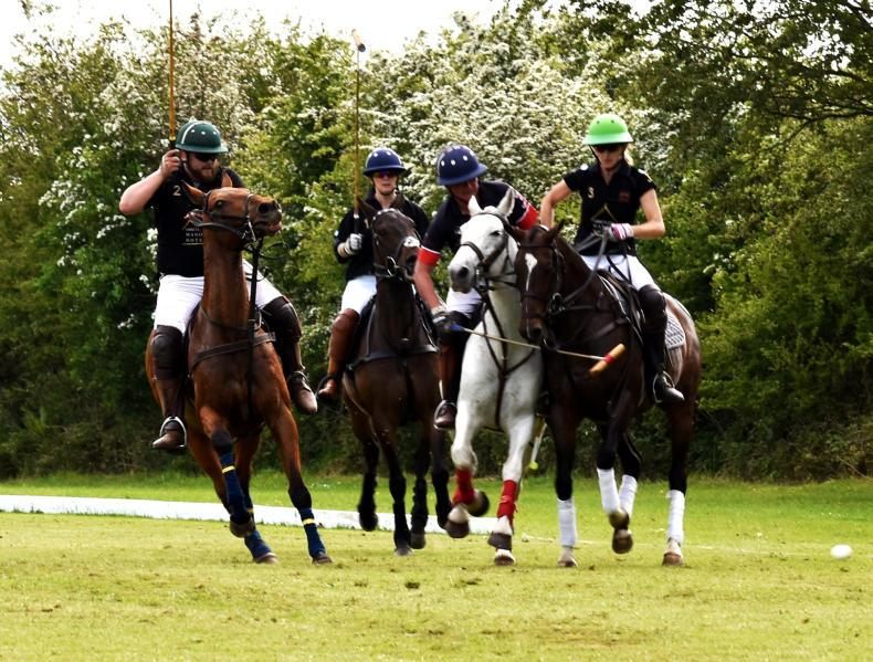 POLO:  Polo growing in popularity at Ballindenisk