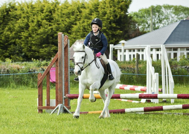 IRISH HORSE WORLD FIXTURES, JUNE 1st 2019