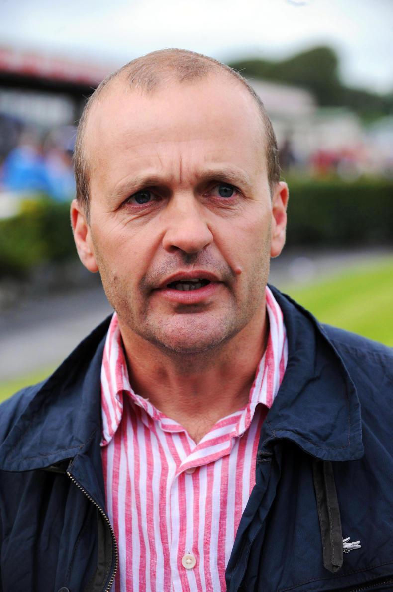 DONN McCLEAN: Good mix of Curragh winners