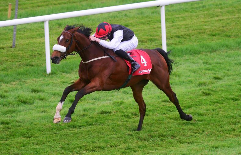 GOWRAN PARK WEDNESDAY: Claim over and out for Orr