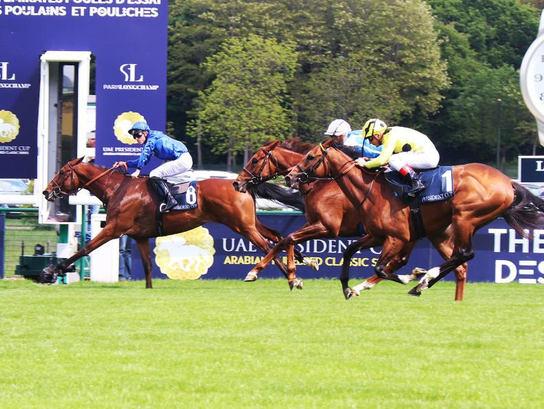 FRENCH PREVIEW: Persian King hoping to reign supreme at Chantilly