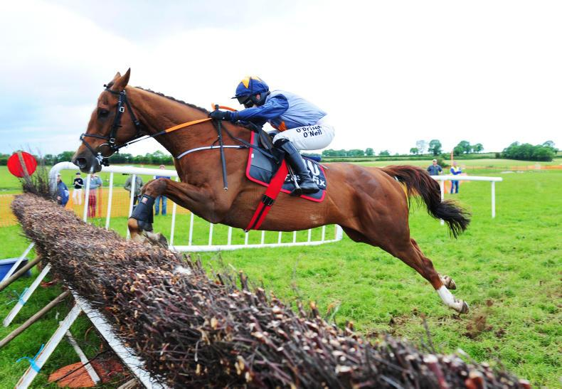 POINT-TO-POINT: Ballingarry Monday  - Kruzhlinin shares top honours