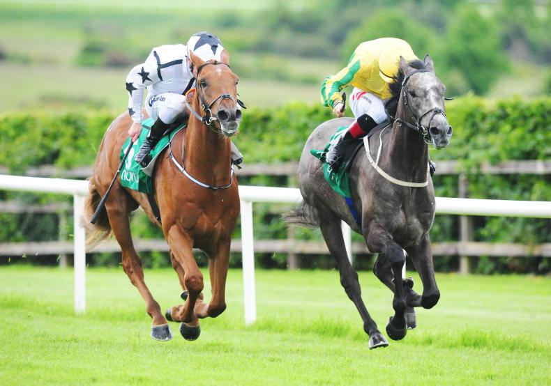 NAVAN SATURDAY: In-form Lyons and Keane are Royal County stars