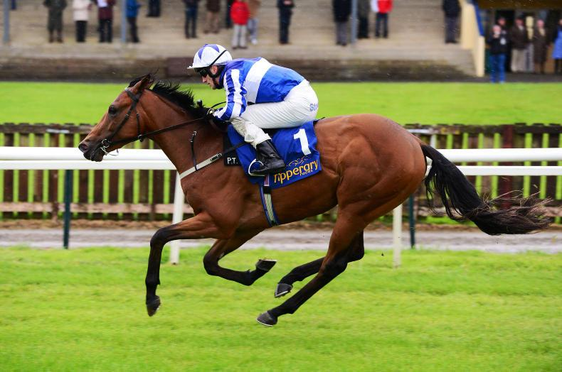 TIPPERARY TUESDAY: Speedy Sovereign set for Royal date