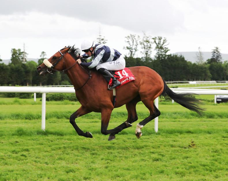 GOWRAN PARK MONDAY:  Hail Helly Aa for McCreery treble