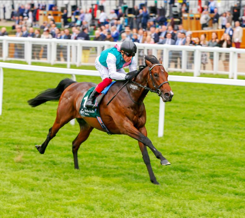 Injury rules Calyx out of Royal Ascot