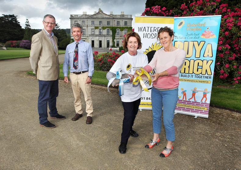 PONY TALES:  Bumper crowds expected at Waterford Country Fair