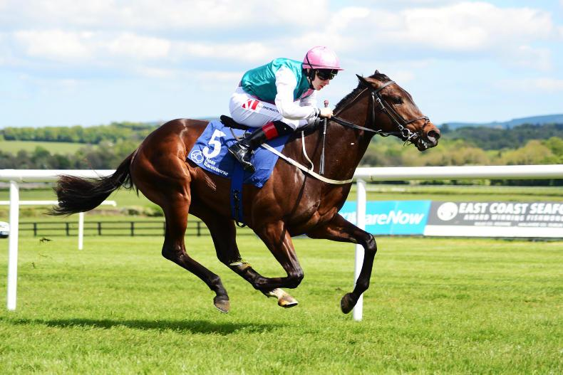 Rising star Siskin to be given Coventry Stakes engagement