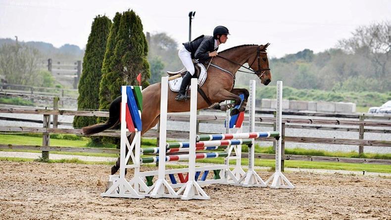 CAVAN SALES PREVIEW: Well-related horses head to Cavan performance sale