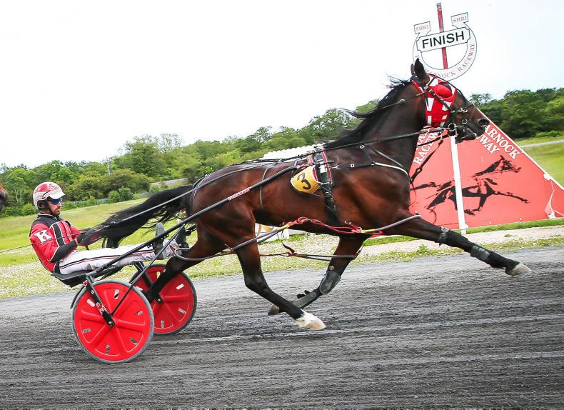 HARNESS RACING:  Exciting finishes likely at Lyre