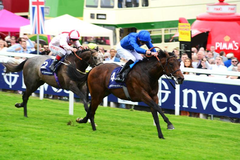 Impressive Epsom winner Pinatubo features in Coventry possibles