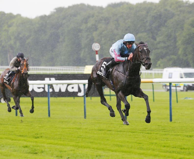 BRITAIN: Klassique too good for Mullins mare