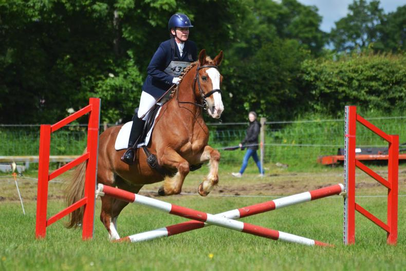 PONY TALES: Caroline and Chieftain - a match made in heaven