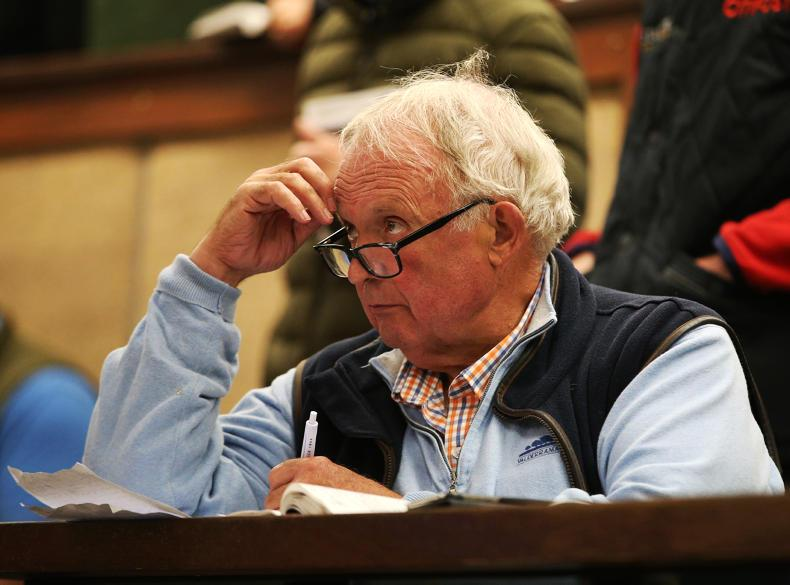 NEWS: British buyers dig deep for Irish bloodstock