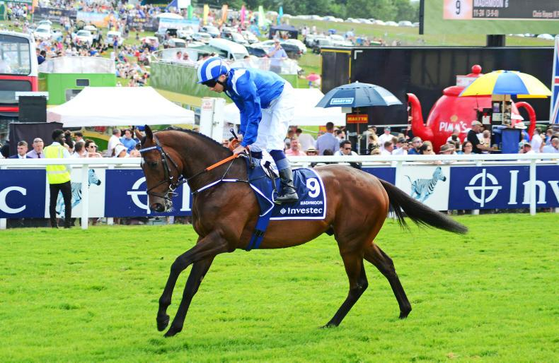 NEWS: Madhmoon confirmed for Irish Derby rematch